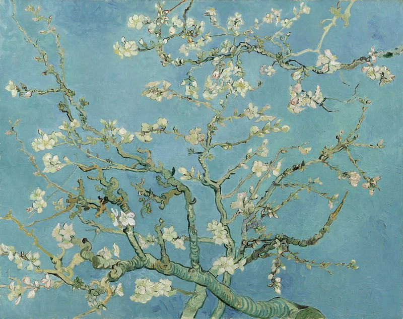 Blossoming Almond Tree. Vincent van Gogh