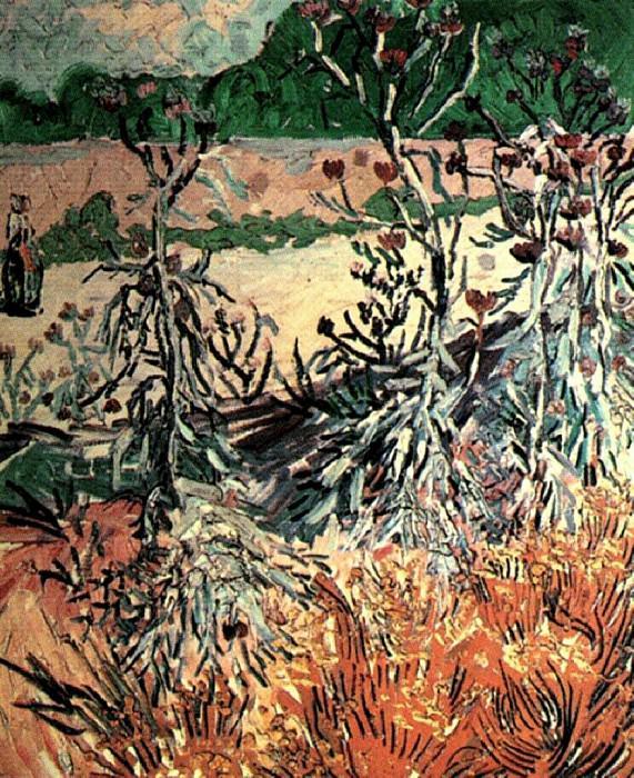 Thistles. Vincent van Gogh