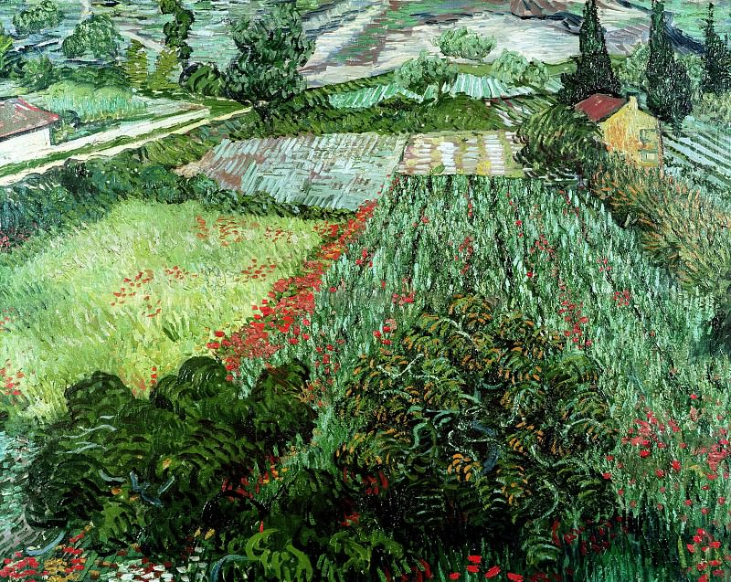 Field with Poppies. Vincent van Gogh