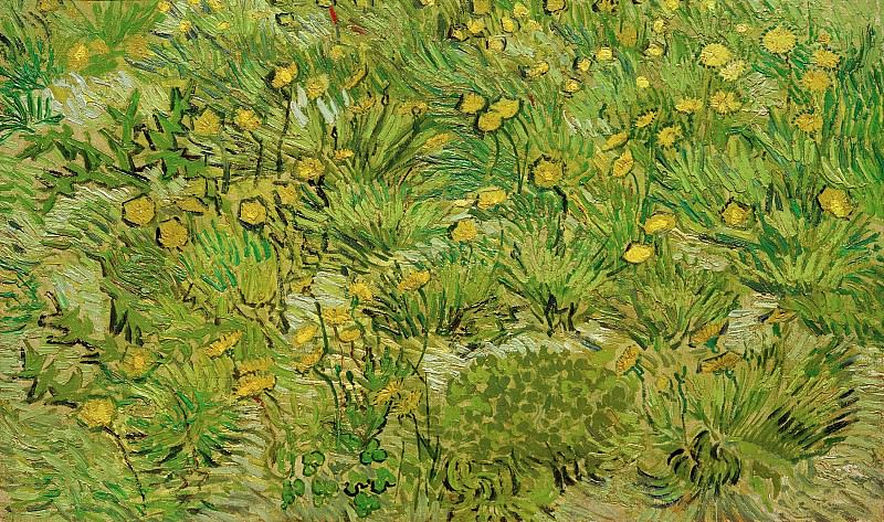 A Field with dandelions. Vincent van Gogh