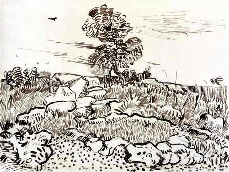 Rocky Ground at Montmajour. Vincent van Gogh
