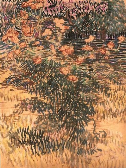 Flowering Shrubs. Vincent van Gogh