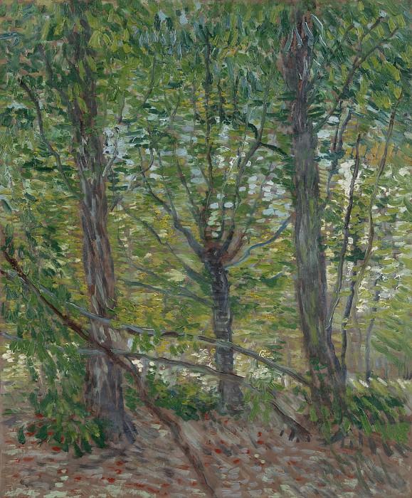 Trees. Vincent van Gogh