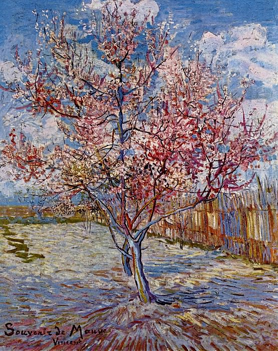 Peach Tree in Bloom (in memory of Mauve). Vincent van Gogh
