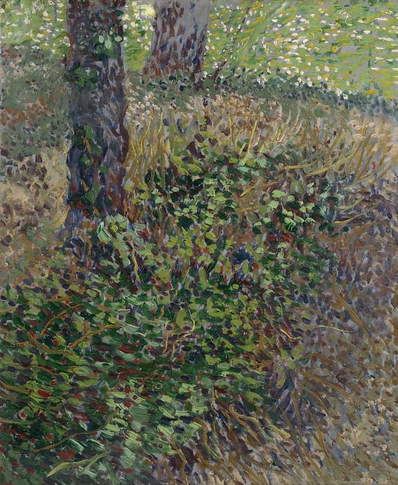 Undergrowth. Vincent van Gogh