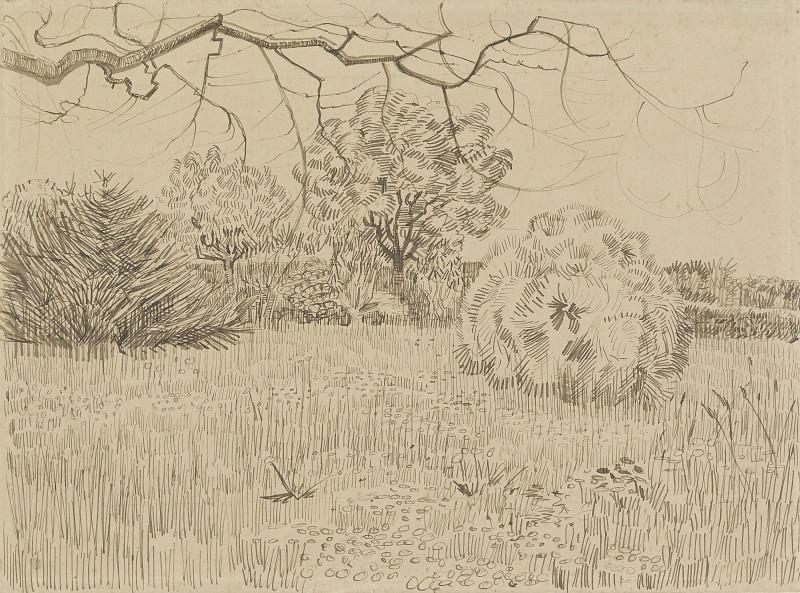Park at Arles. Vincent van Gogh