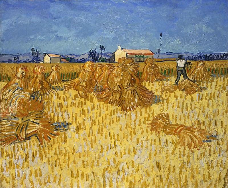 Harvest in Provence. Vincent van Gogh