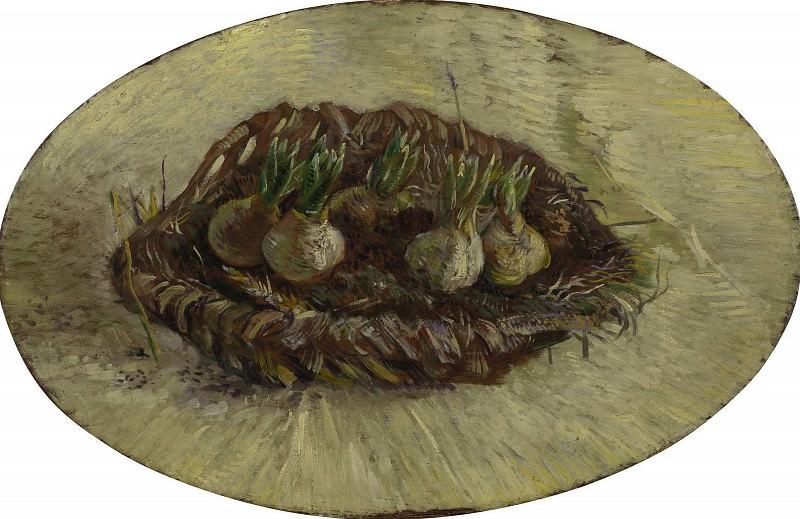 Basket of Hyacinth Bulbs. Vincent van Gogh