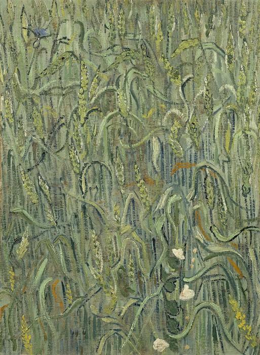 Ears of Wheat. Vincent van Gogh