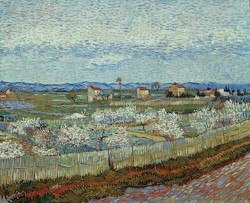 La Crau with Peach Trees in Bloom. Vincent van Gogh