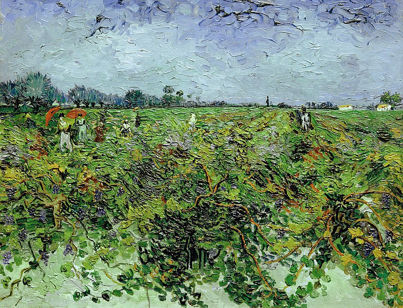 The Green Vineyard. Vincent van Gogh