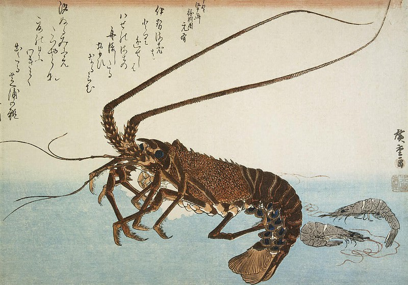 Ando Hiroshige - Sheet lobster and shrimp. Part 01 Hermitage