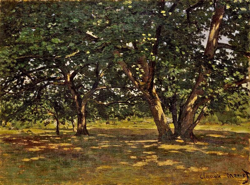 Fontainebleau Forest. Claude Oscar Monet