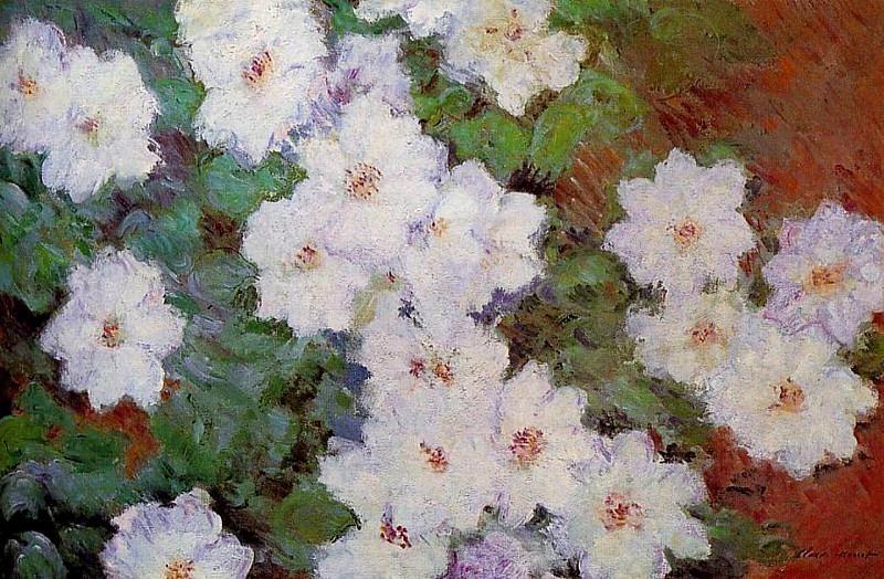 Clematis. Claude Oscar Monet