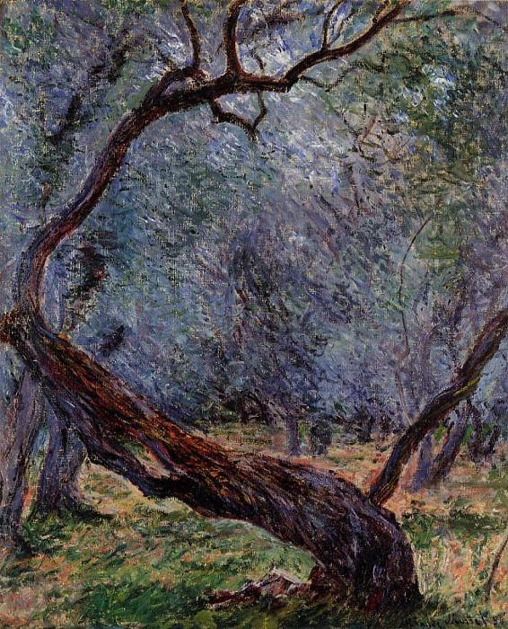 Olive Trees (Study). Claude Oscar Monet
