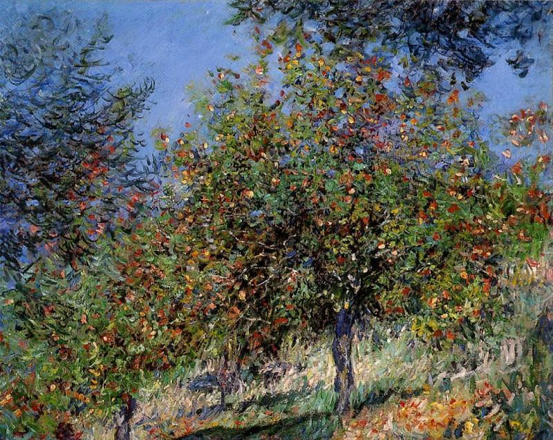 Apple Trees on the Chantemesle Hill. Claude Oscar Monet