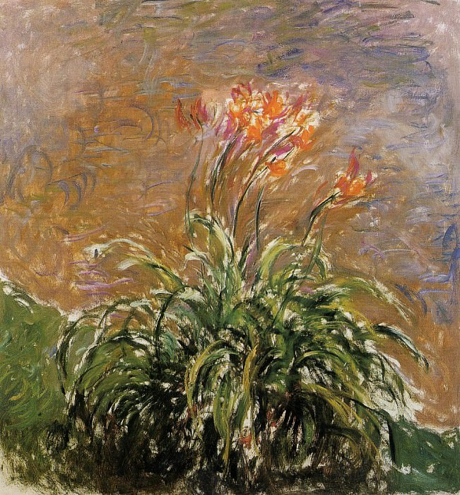 Hamerocallis. Claude Oscar Monet
