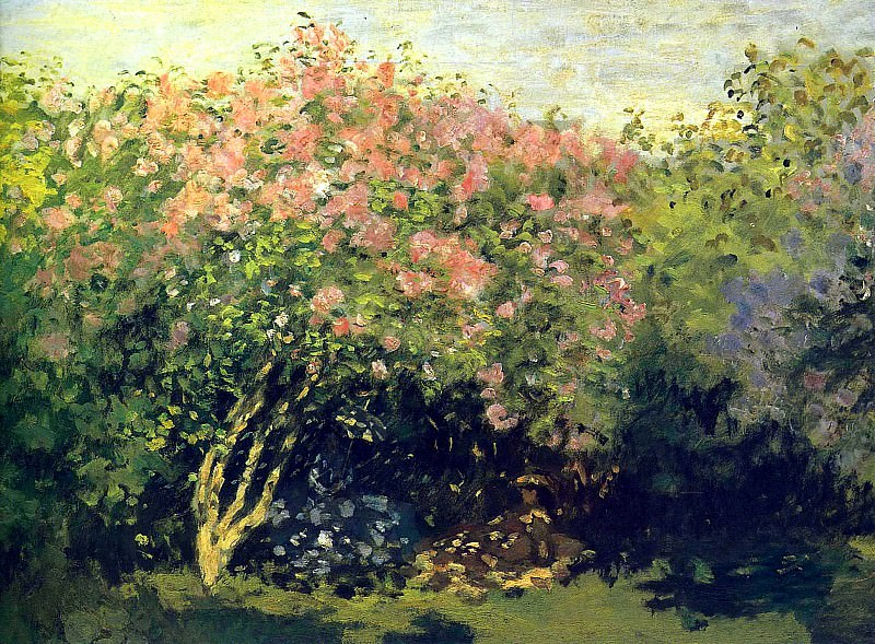 Lilacs in the Sun, 1872. JPG. Claude Oscar Monet