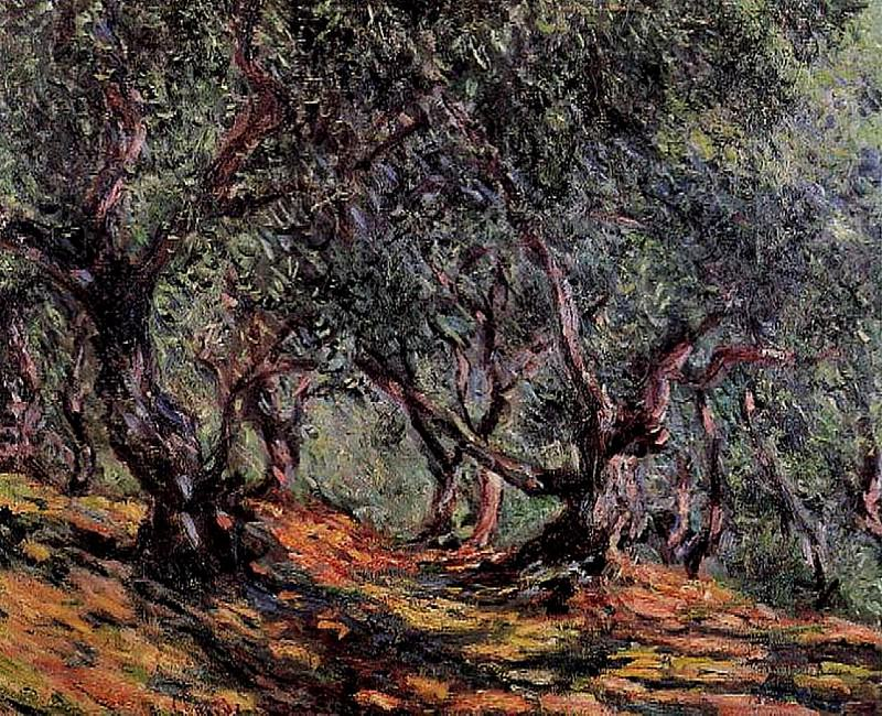 Olive Trees in Bordigher. Claude Oscar Monet