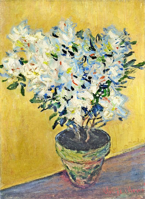 White Azaleas in a Pot. Claude Oscar Monet
