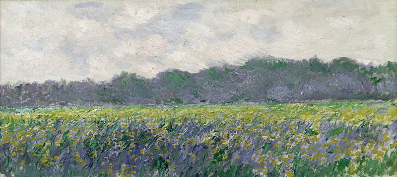 Field of Yellow Irises at Giverny. Claude Oscar Monet