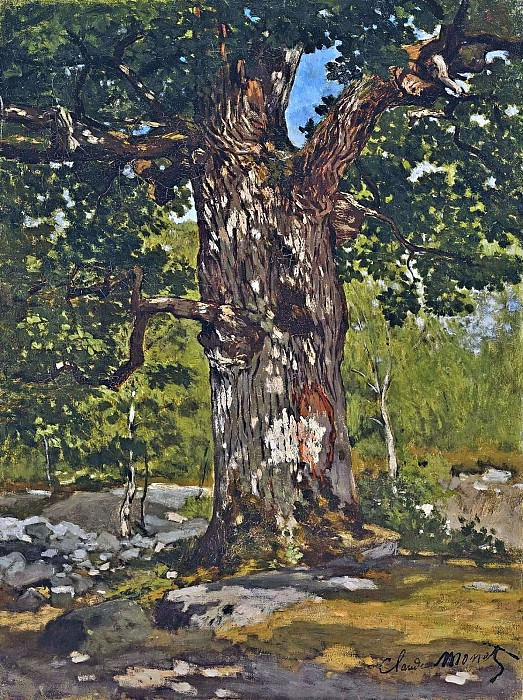 The Bodmer Oak. Claude Oscar Monet