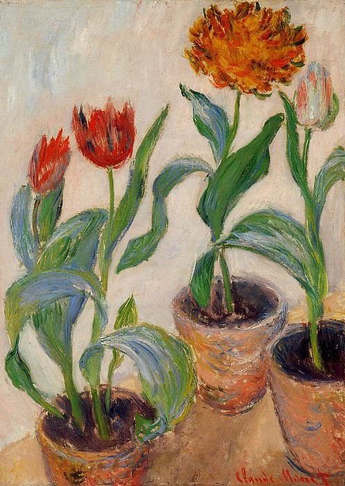 Three Pots of Tulips. Claude Oscar Monet