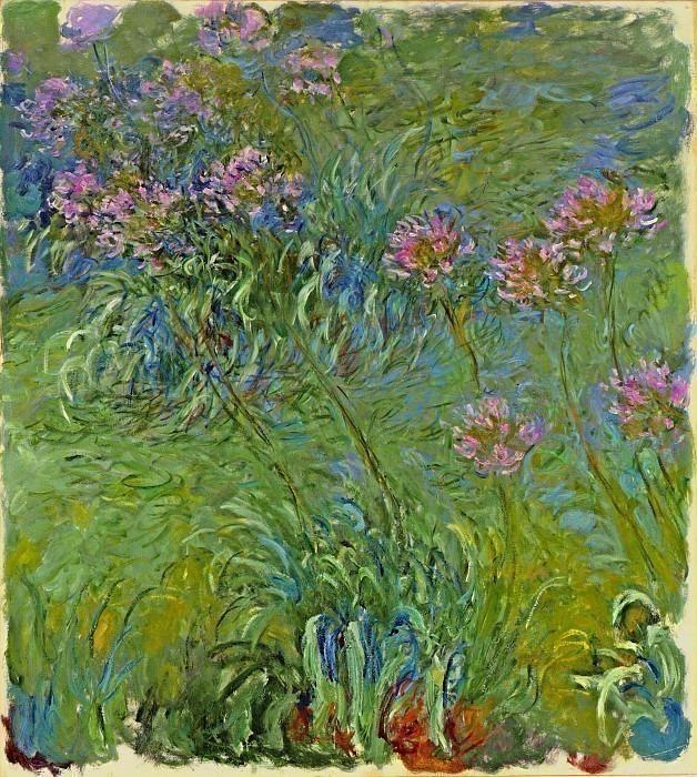 Agapanthus Flowers. Claude Oscar Monet