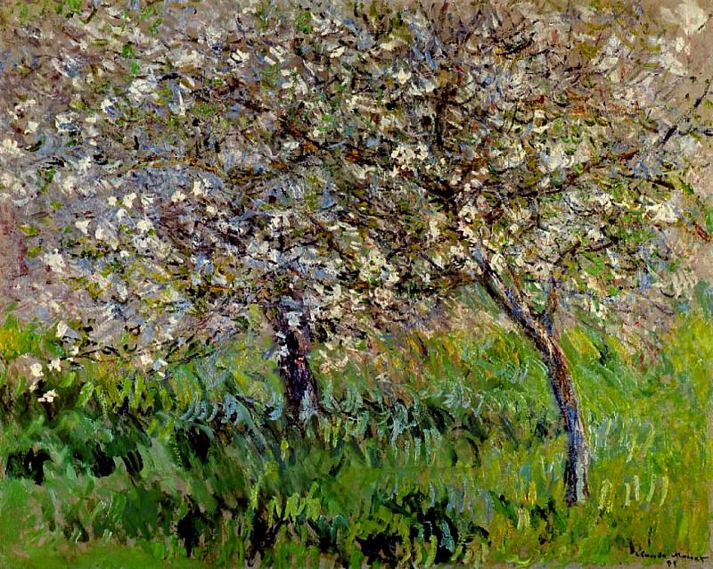 Apple Trees in Bloom at Giverny. Claude Oscar Monet