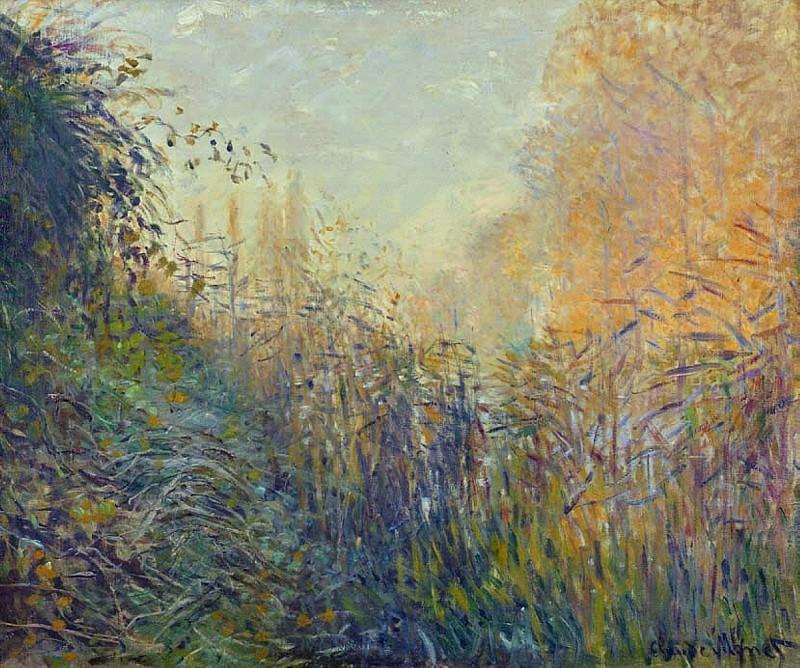 Etude de joncs a Argenteuil. Claude Oscar Monet