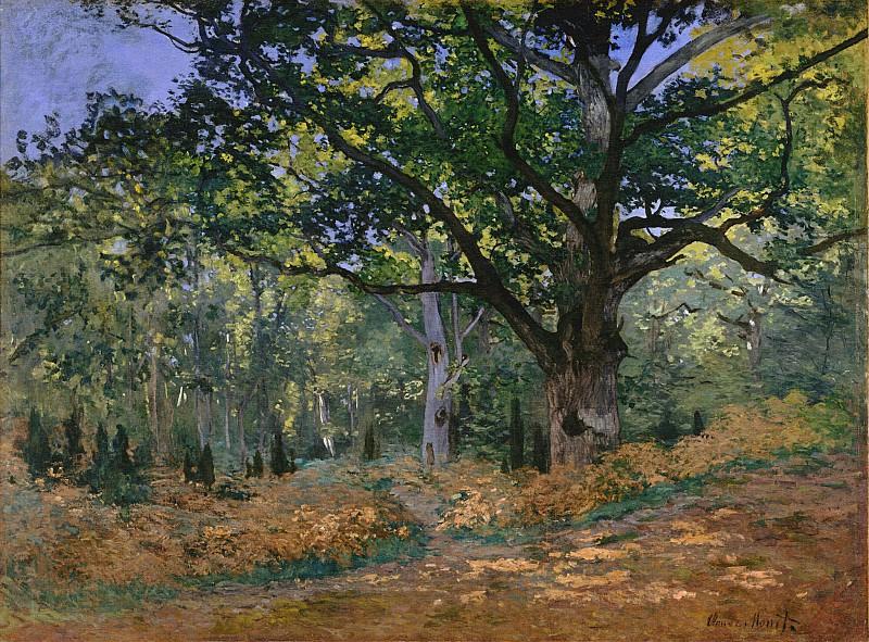 The Bodmer Oak, Fontainebleau. Claude Oscar Monet