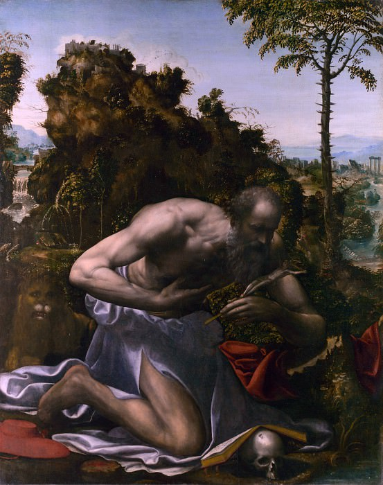 Sodoma - Saint Jerome in Penitence. Part 6 National Gallery UK