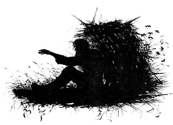 -Силуэт. Типы из Записок охотника Тургенева 1883 Контора. 2. Елизавета Меркурьевна Бём (Эндаурова)