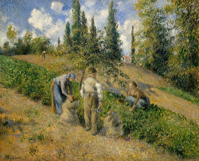 Camille Pissarro - The Harvest, Pontoise (La Récolte, Pontoise). Metropolitan Museum: part 2