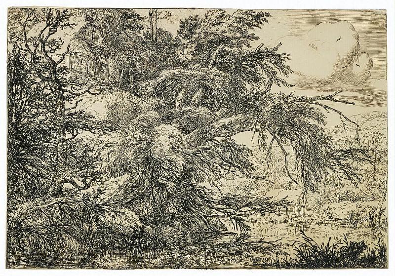 Рейсдал, Якоб Изакс ван - Пейзаж с домом на холме. Эрмитаж ~ часть 10
