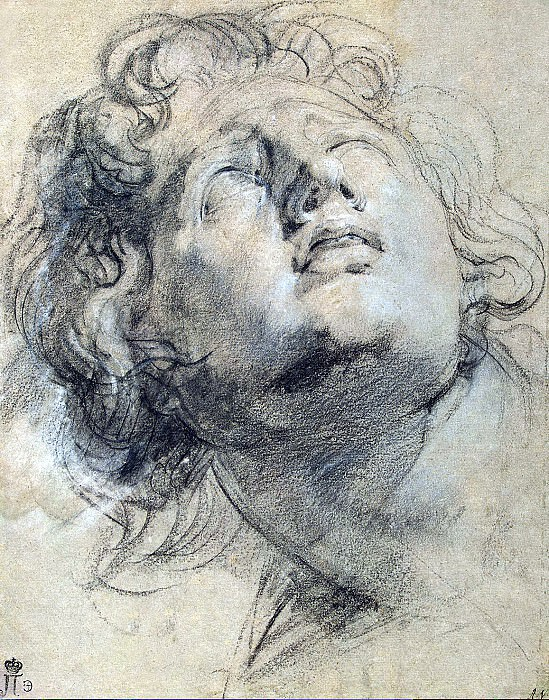 Rubens, Peter Paul - The head of a young man looking up. Hermitage ~ part 10