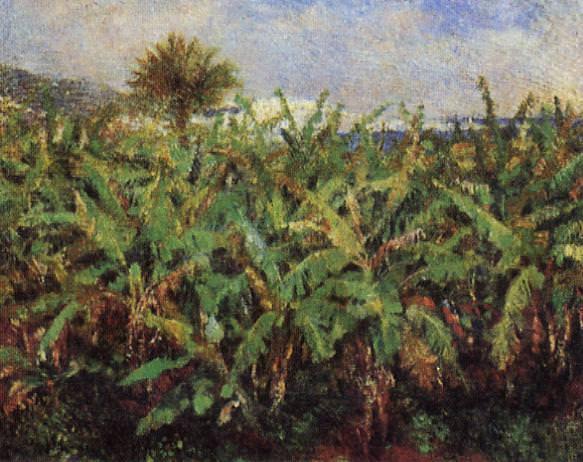 Field of Banana Trees - 1881. Pierre-Auguste Renoir