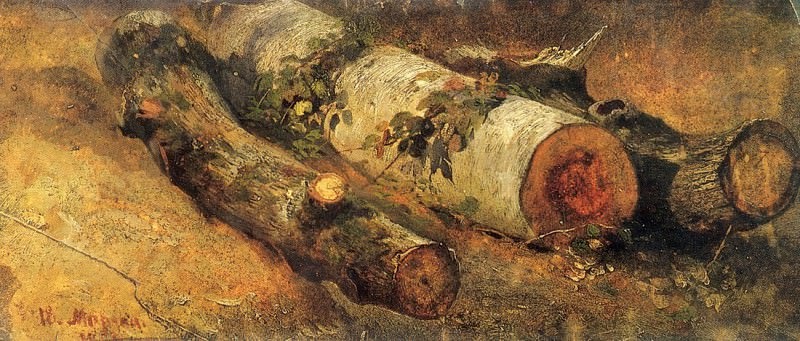 Felled birch. 1864 18, 8h44, 5. Ivan Ivanovich Shishkin
