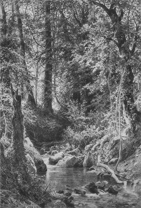 Лесной ручей 1880 77, 4х61, 4. Иван Иванович Шишкин