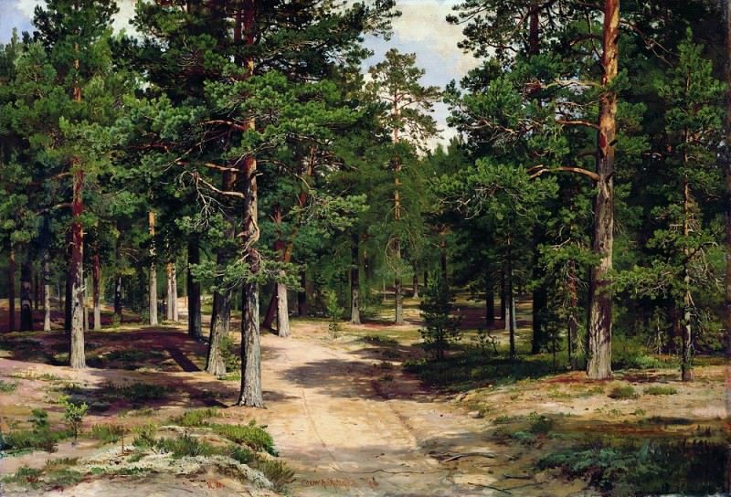 Sestroretsky Bor 70h105 1886. Ivan Ivanovich Shishkin
