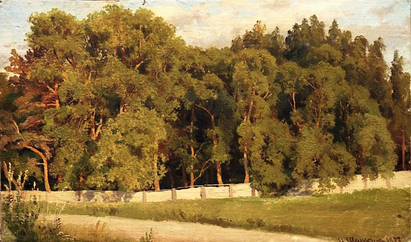 Forest side of the fence in 1898. Ivan Ivanovich Shishkin