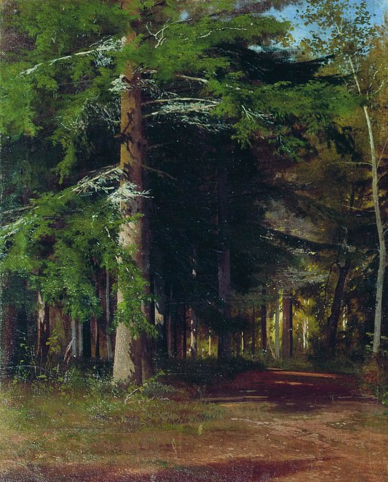 Study for the painting felling of the forest. 1867 42h34. Ivan Ivanovich Shishkin
