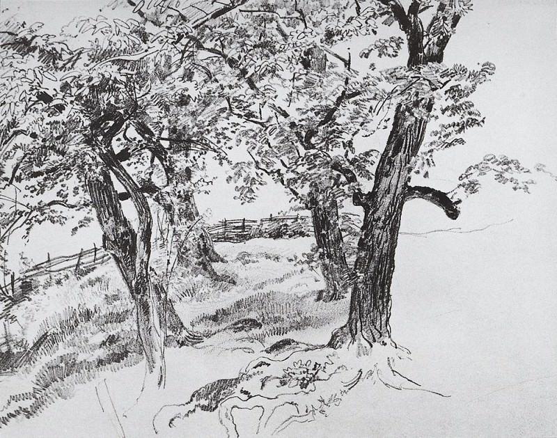 Trees 1870 21, 9h28, 9. Ivan Ivanovich Shishkin