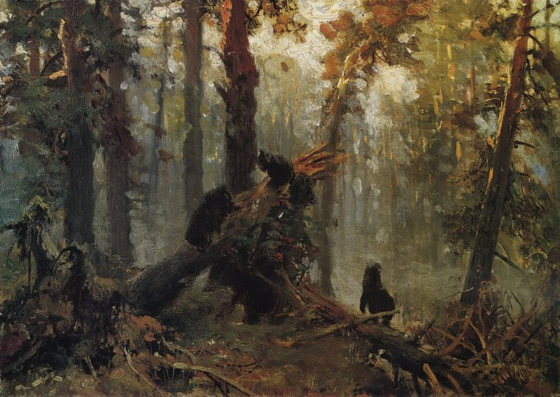 Morning in the AS. forest. Sketch 1889 28, 3h40, 1. Ivan Ivanovich Shishkin