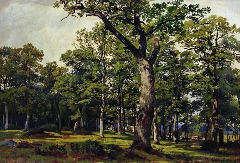 1869 Oak Forest 55. 8h82. Ivan Ivanovich Shishkin