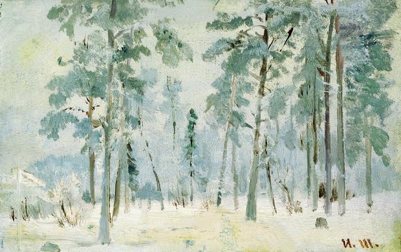 Forest of frost. 1890. Etude 13, 2h21, 2. Ivan Ivanovich Shishkin