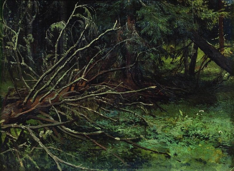 In the fir forest 39h51. Ivan Ivanovich Shishkin