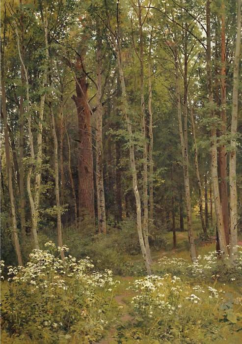 1894 Forest thicket 105h74. Ivan Ivanovich Shishkin