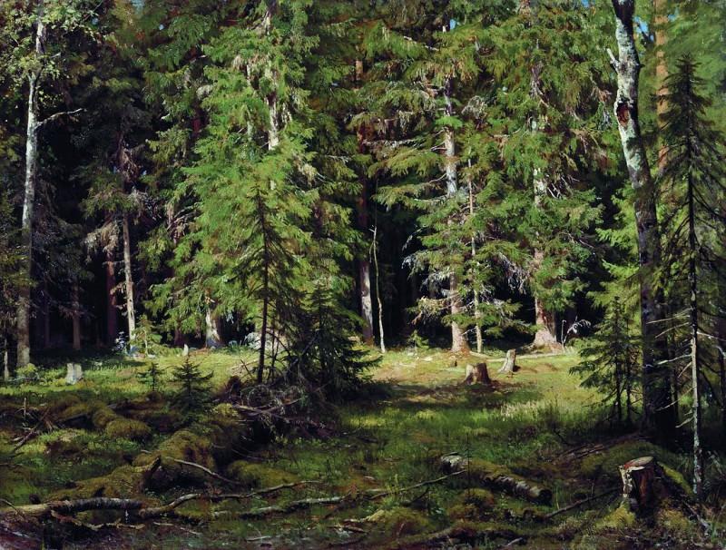 Forest. 1880 83h110. Ivan Ivanovich Shishkin