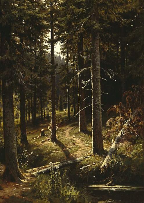 Woodland Scene 1889-1890 51. 2х36 9. Ivan Ivanovich Shishkin